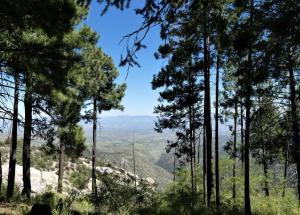 Mount Lemmon, Arizona